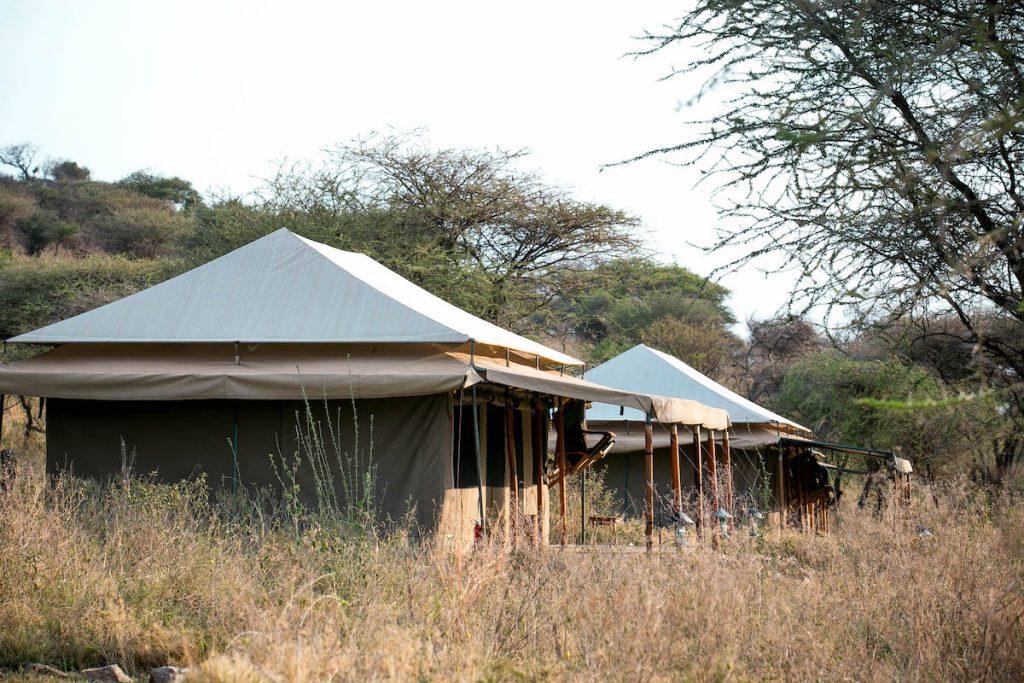 Serengetipuretented97